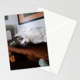 Cat on a Shelf Stationery Cards