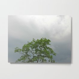 Lonely As A Tree Metal Print
