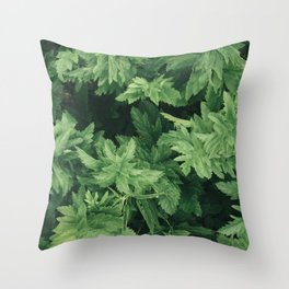 Above the Plants Throw Pillow