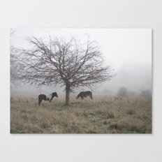 Two Horses Under a Tree in the Mist Canvas Print
