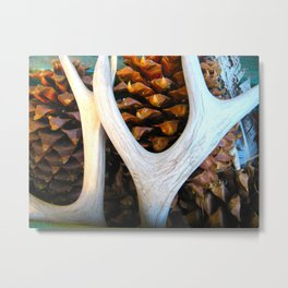 Antler, Pinecones Metal Print