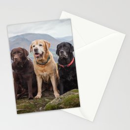 Labradors Stationery Cards