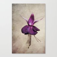 ballerina Canvas Prints featuring ballerina by lucyliu