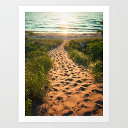 Path To Lake Michigan Art Print