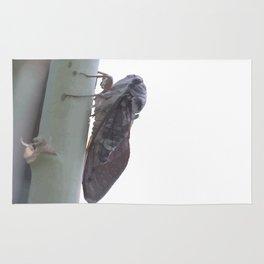 Cicada Vector Rug