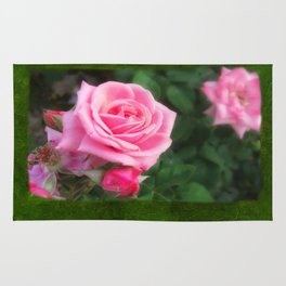 Pink Roses in Anzures 1 Blank P1F0 Rug