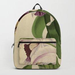 The Orchid Album - Dendrobium Suavissimum Backpack