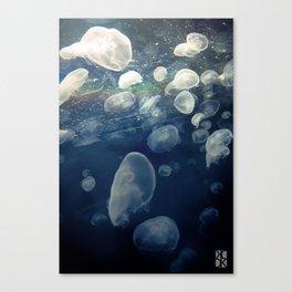 Jellyfish2 Canvas Print