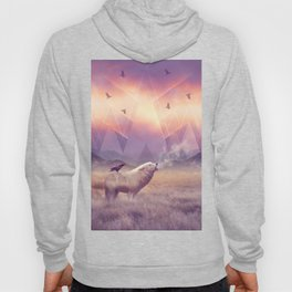 In Search of Solace Hoody