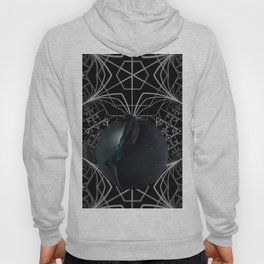 The apple of discord Hoody