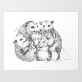 Possum Party Art Print