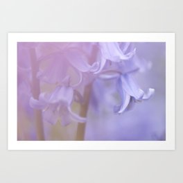 Pinks and Blues Art Print