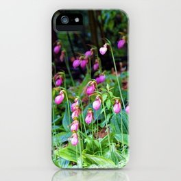 Wild Orchid Lady Slipper Forest Flowers Found in Rhode Island iPhone Case