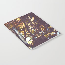autumn leaves, lamp post Notebook
