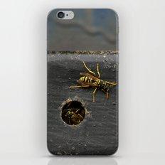 Yellow Jackets iPhone & iPod Skin