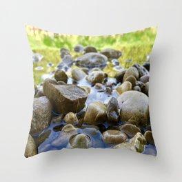 Stuck Between a Rock and a Wet Place Throw Pillow