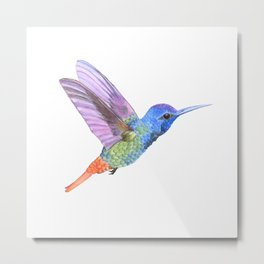 Watercolor Springtime Hummingbird Metal Print
