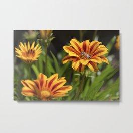 Beautiful Flower with Bee Metal Print