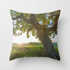 Morning In Danville Throw Pillow