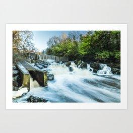 Crumlin Glen Art Print