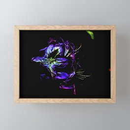 abstract flowers in front of black background Framed Mini Art Print