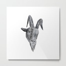 Black Phillip from the Witch Metal Print