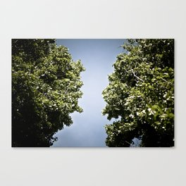 Path in the sky Canvas Print