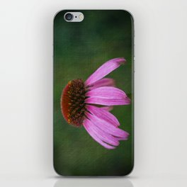Purple Coneflower iPhone Skin