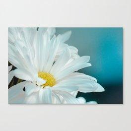 Daisy Blues Nature Photo Print, Daisy Art, Daisy Flowers, Floral Prints, Nature Photography, Macro Canvas Print