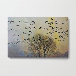 Bird Watching  - JUSTART © Metal Print