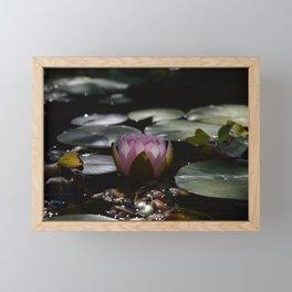 Dark lighting water lily from the side Framed Mini Art Print