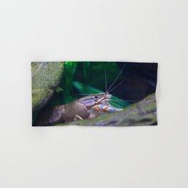The crayfish Hand & Bath Towel