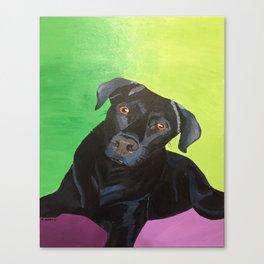 Stevie Rae Canvas Print