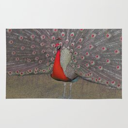 Red peacocks Rug