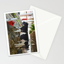 Black and white cow Stationery Cards