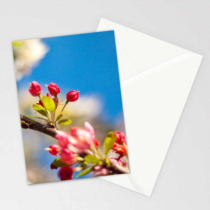 Coming Out To Bloom Stationery Cards