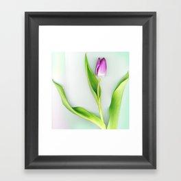 Stretch Framed Art Print