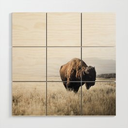 Bison stance Wood Wall Art