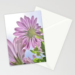 SUNBURST PINK AND LILAC CAPE DAISY FLOWER Stationery Cards