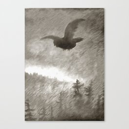 Stealth And Surprise Of The Night Owl Canvas Print