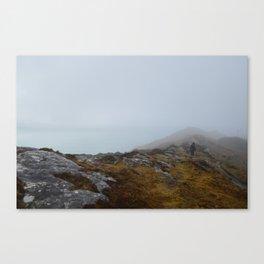 Sheep's Head, West Cork Canvas Print