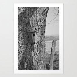 Bird house and fence post Art Print