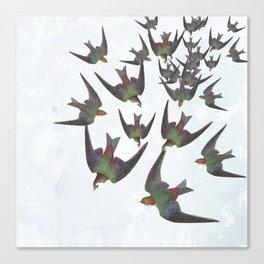 Dipping and dancing barn swallows Canvas Print