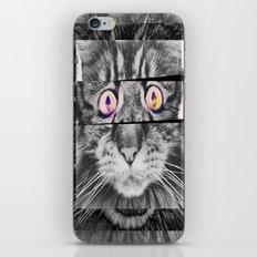 Ailuromaniac iPhone & iPod Skin