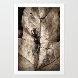 Dampened Art Print