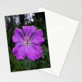 Violet Viola Flower With Garden Background  Stationery Cards