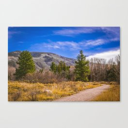 Before The First Snow Canvas Print