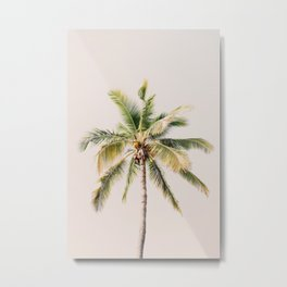 Palm tree - beige minimalist tropical photography in hd Metal Print