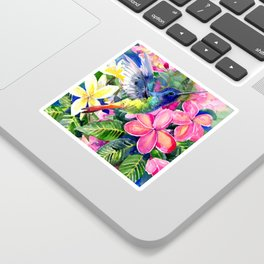 Hummingbird and Plumeria Florwers Tropical bright colored foliage floral Hawaiian Flowers Sticker