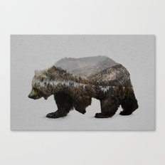 The Kodiak Brown Bear Canvas Print